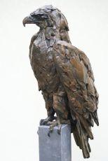 Eagle by Jacqueline van der Laan