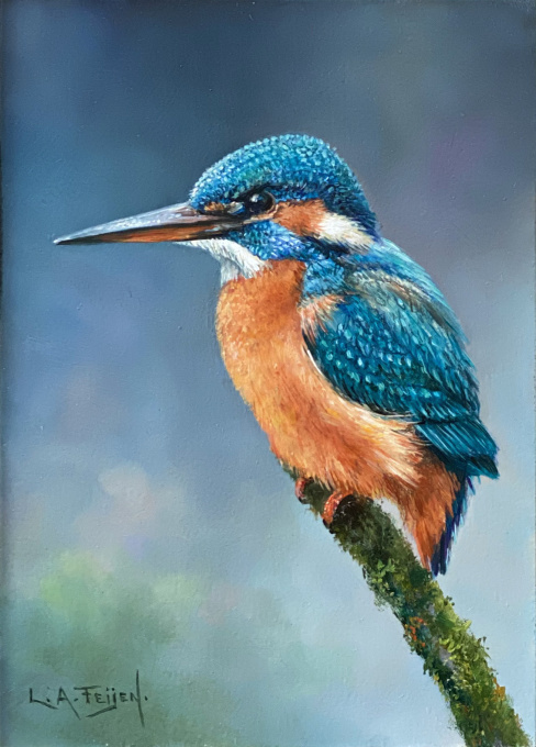 Kingfisher by Lion Arie Feijen
