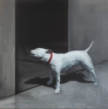 Dog in the street by Graeme Wilcox