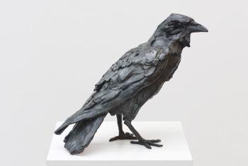 Crow by Jacqueline van der Laan