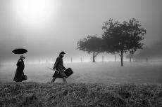 Travel by Koen Hillewaert