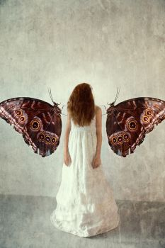 Give Them Wings – New Moments by Michaela Kindle