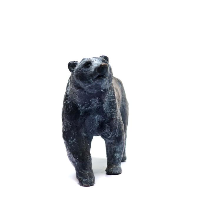 Bear by Yanina Antsulevich