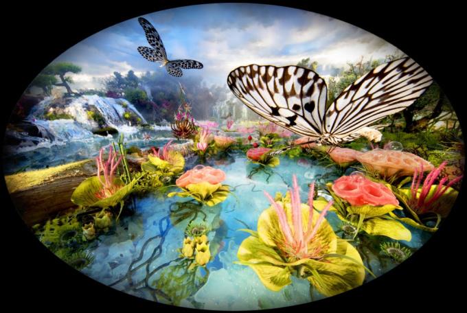 Waterfall Butterflies by Bethany de Forest