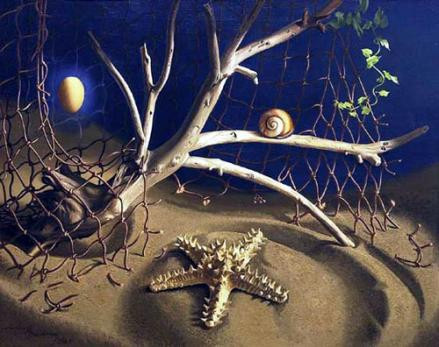 Starfish and driftwood by Lodewijk Bruckman