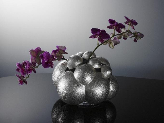 Tulip vase Tulipbulbs by Paul de Vries
