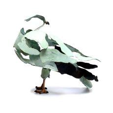 Hen Harrier by Jozephine Wortelboer
