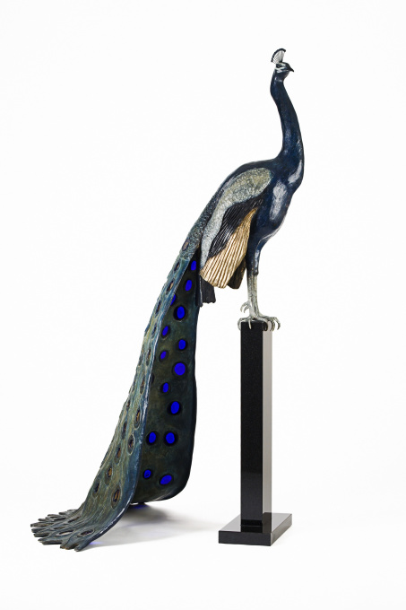 Peacock by Madeleine van der Knoop
