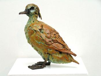 Tufted duck by Jacqueline van der Laan