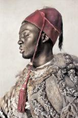 Diaspora - Ninho by Dagmar van Weeghel