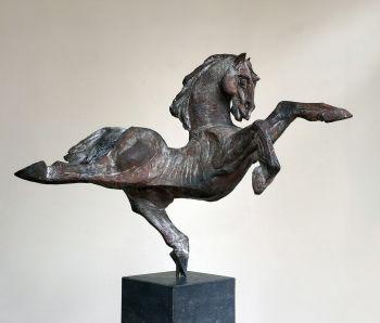 Dancing Horse by Jos Dirix