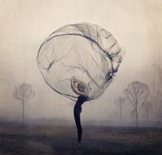 Allies by Kylli Sparre