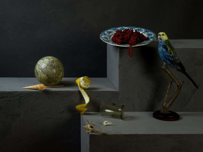 Wunderkammer met Bleekkop by Jeroen Luijt