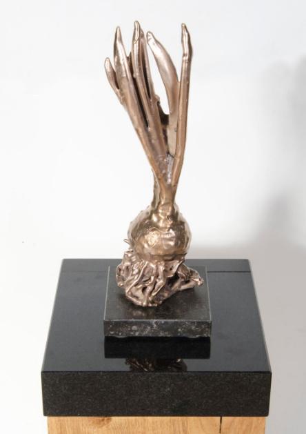 Hyacinth III by Jos van Doorn