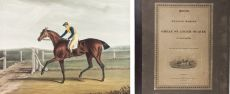 14 hand-coloured aquatint plates of wonderful racehorses