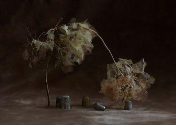 Still here - Familiar Patterns by Suzanne Jongmans