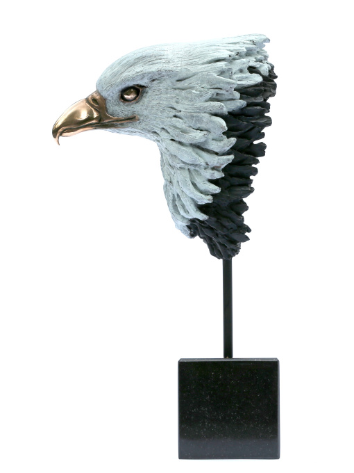 Head of Eagle by Madeleine van der Knoop