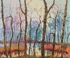 Foggy Pool by Gertjan Scholte-Albers