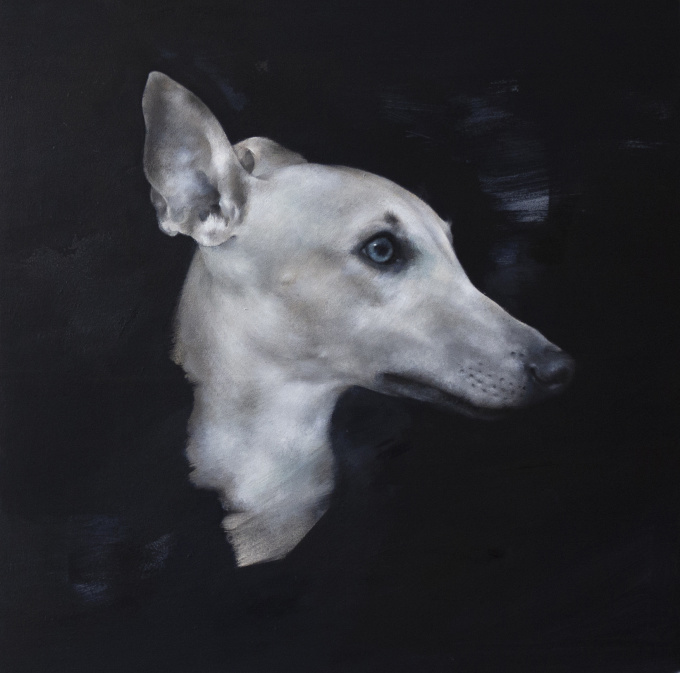 Whippet by Justin Coburn