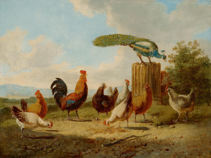 Poultry in a sunny landscape by Albertus Verhoesen
