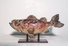 Seabass by Pieter Van den Daele