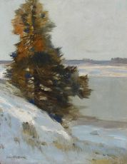 Winter landscape by Louis van Soest