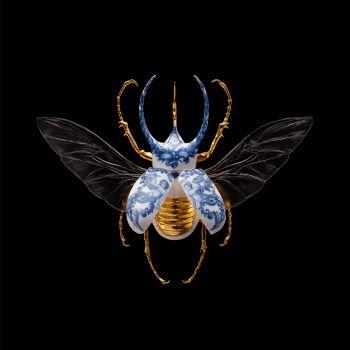 Anatomia Blue Heritage - Atlas Beetle Open Wings by Samuel Dejong