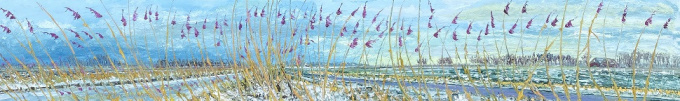 Sneeuw en riet by Gertjan Scholte-Albers