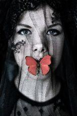 Photo named ' Butterfly'  by Tanneke Peetoom