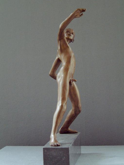 David by Wim van der Kant