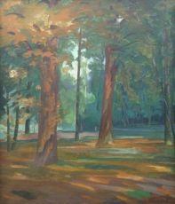 Woodland scene, Corversbos near Hilversum