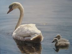 Swan with cygnets by Wouter van Soest