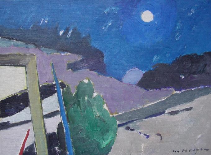 Blue moonlit night by Paul Hugo ten Hoopen