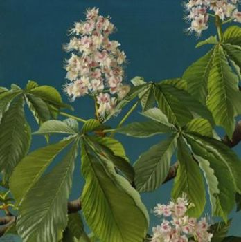 Blossom branche by Lodewijk Bruckman