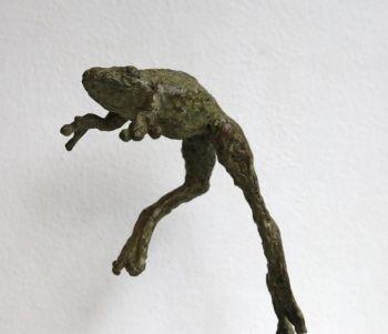 Kikker springend by Hans Jouta